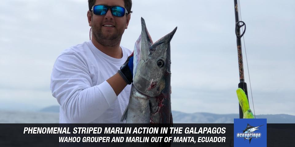 fishing reports 2018102307 marlin tuna wahoo swordfish ecuador galapagos manta 00