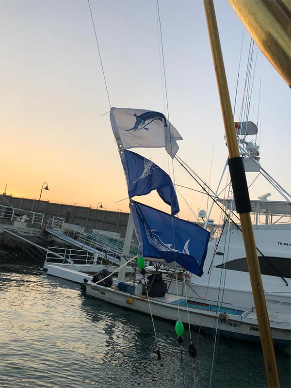 marlin fishing report 20181102 02