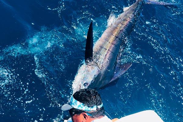 promotion 20190313 marlin fishing 04