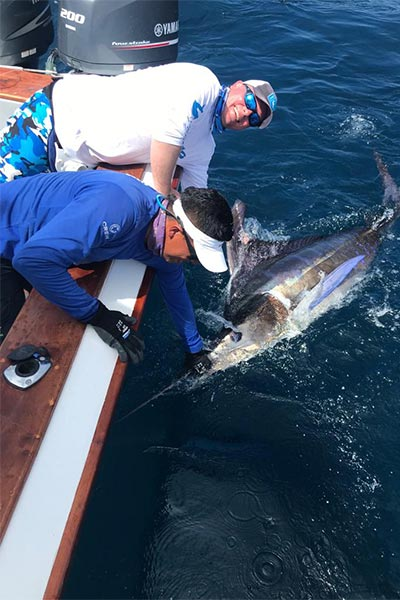 ecuagringo marlin fishing report 20190625 03
