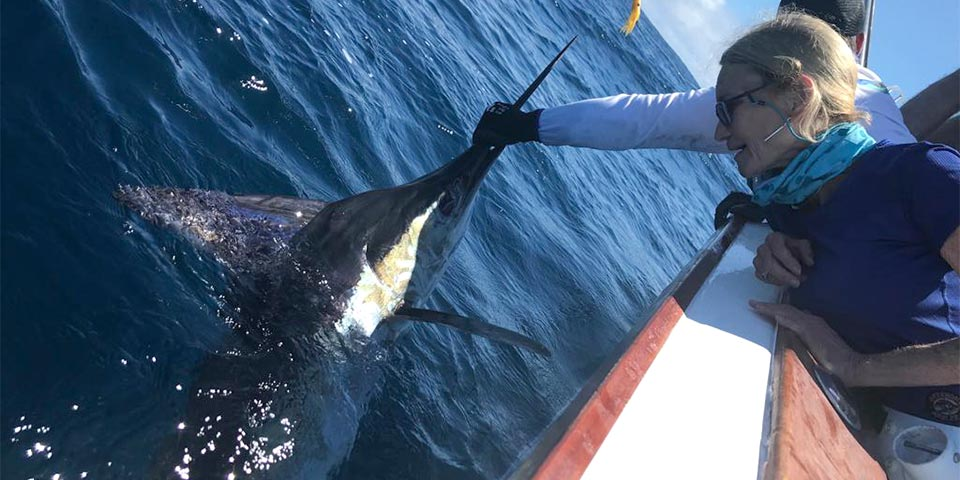 ecuagringo marlin fishing report 20190630 01