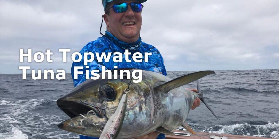 Marlin Fishing Trips in Galapagos Islands - Ecuagringo