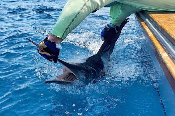 blog fishing galapagos islands 20200904 02
