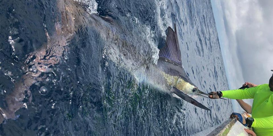 Galapagos Islands Limited Time Fishing Special