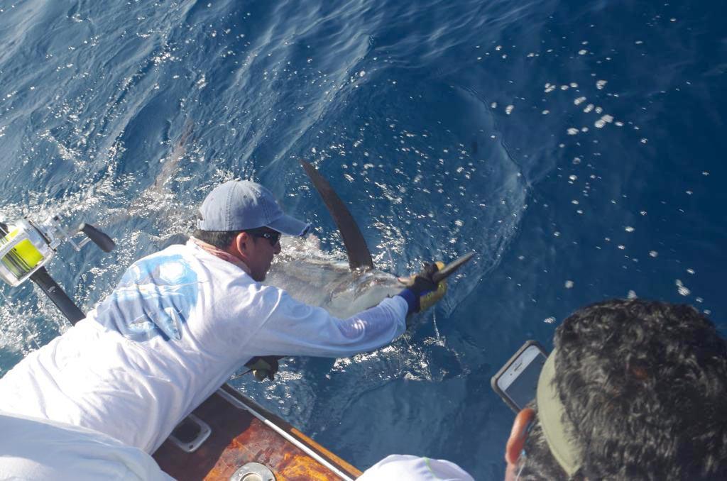 promo marlin fishing 20210222 02