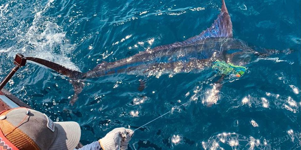 fishing report 20210610 01