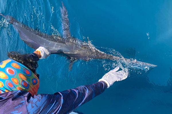 fishing blog ecuagringo 20210731 02