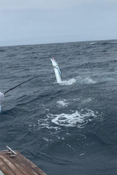 fishing report galapagos 20210830 01