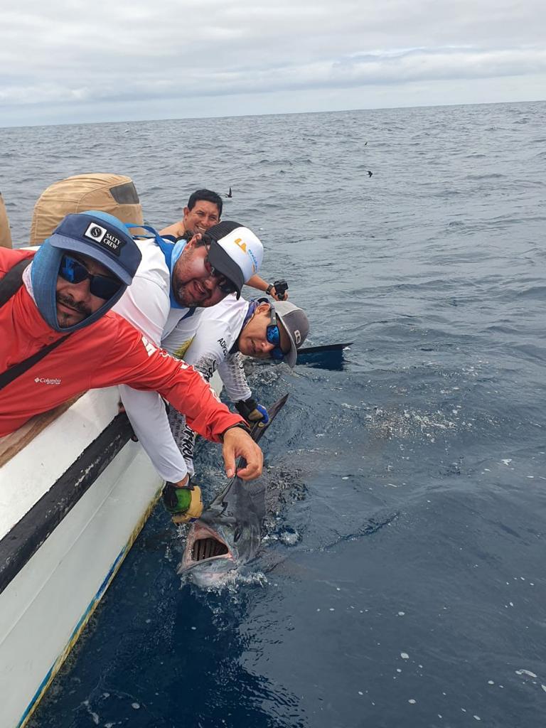 marlin fishing galapagos pic 20211006 05