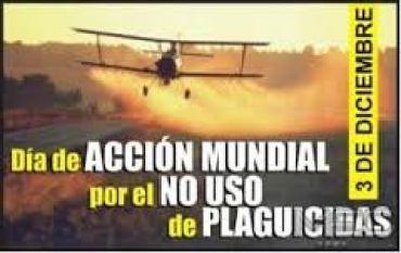dia internacional contra plaguicidas