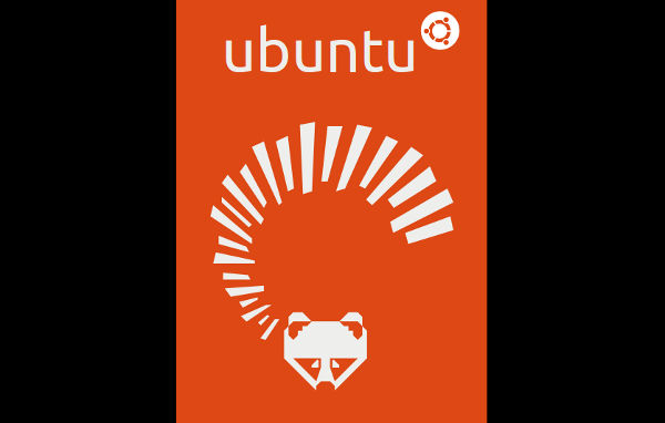 Ubuntu 13.04 artwork