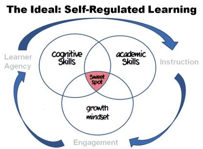 self-regulated learning Venn diagram