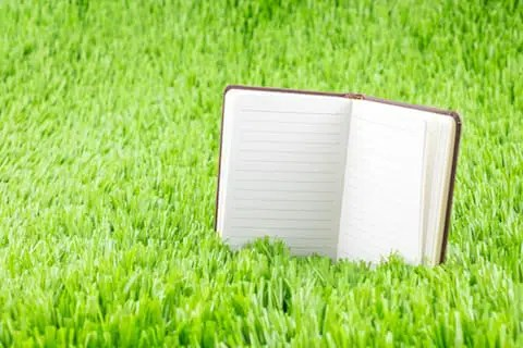 notebook green grass