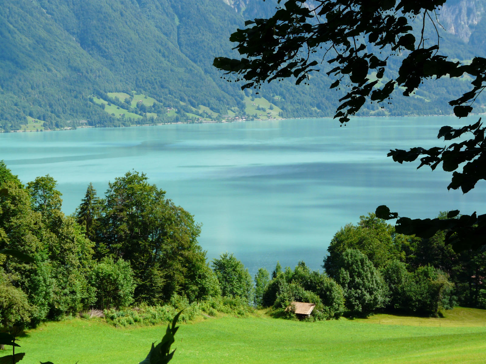 Point de vue sur BrienzerSee