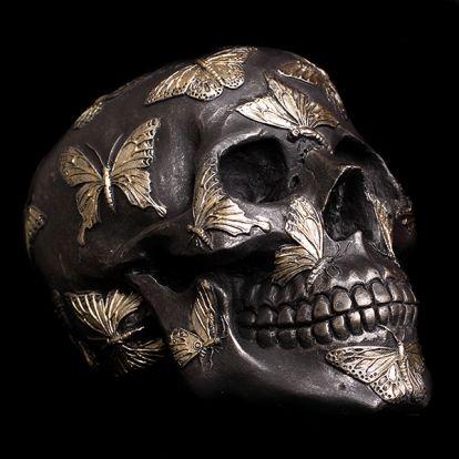 Crâne et papillons