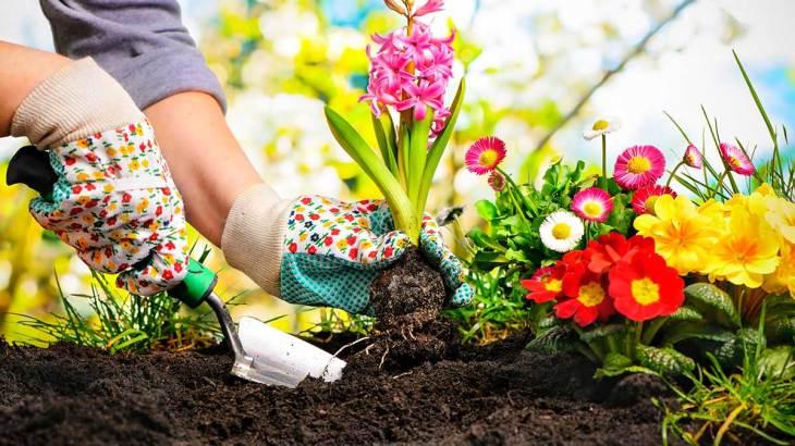 Passione Giardinaggio