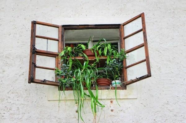 fioriere per finestra