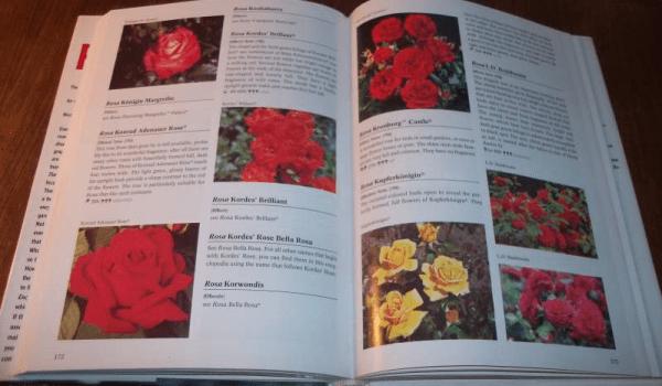Libri sui fiori