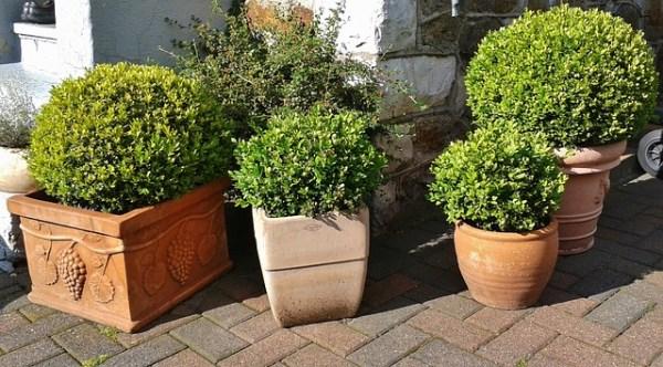 I vasi da giardino per arredare con piante e fiori - Vasi di arredamento da interni ...