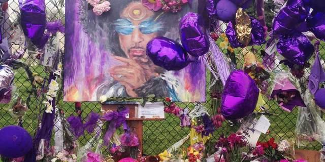 purple-wide