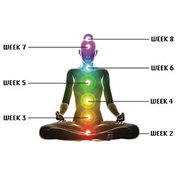 Chakra Awakening Boot Camp | Week 2 @ Modus Locus  | Minneapolis | Minnesota | United States