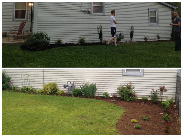 Side-Garden-BefAft