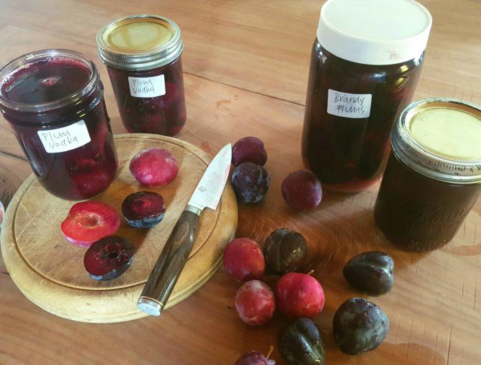 boozy plums
