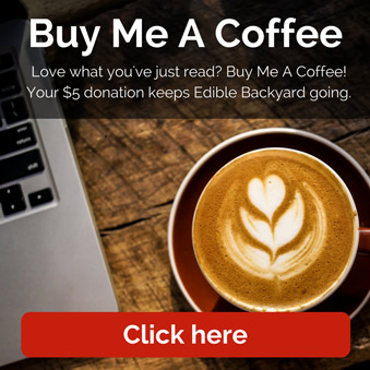 Buy Me A Coffee - Love what you've just read? Buy Me A Coffee! Your $5 donation keeps Edible Backyard going.  Thanks so much! Kath x
