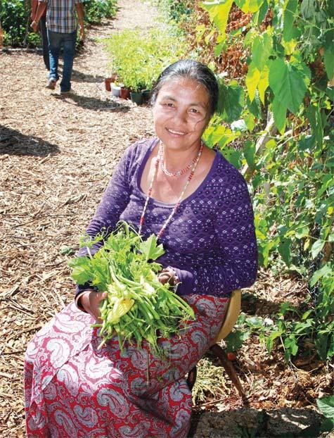 gardenGrowNarMaya