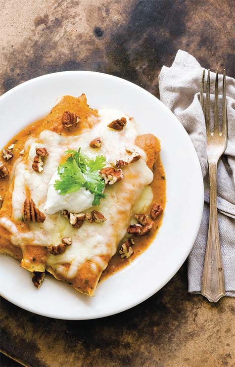 turkeyEnchilada