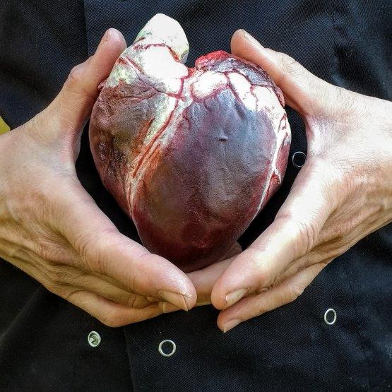 Dark Chocolate Human Heart