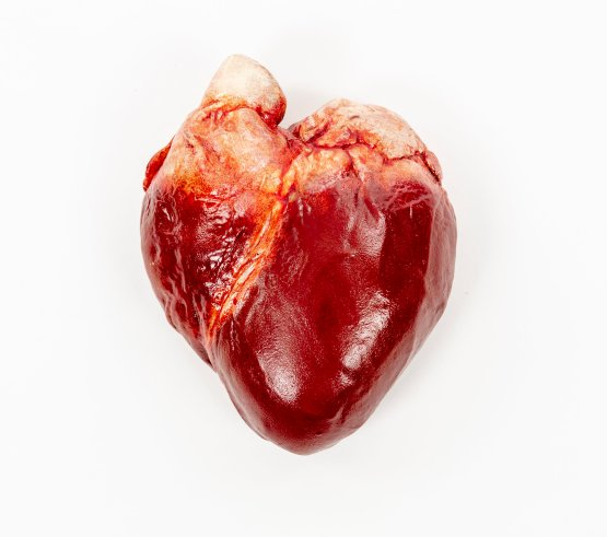 A realistic heart made of chocolate on a white background