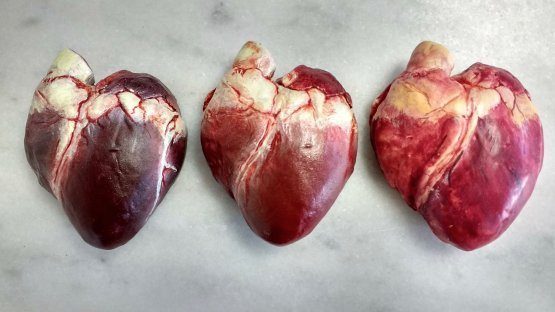 Realistic Chocolate Human Hearts in Dark, Milk & White. They look very real with blood and fat painted on