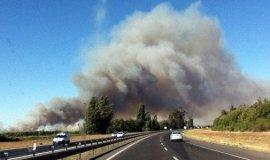 Piñera declara zona de catástrofe en comunas del Biobío por incendios forestales
