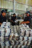 Tarapacá mantiene en 4.8 tasa de desocupación en último trimestre