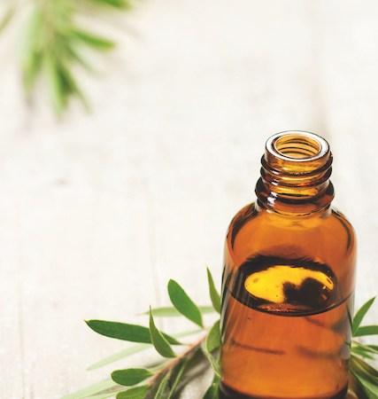 Haz tu propio limpiador casero con aceite de árbol de té