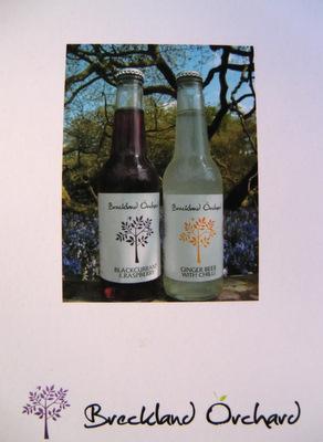 Breckland Orchard Posh Pop