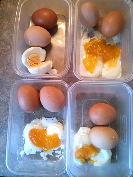 Heat diffusing the perfect egg.