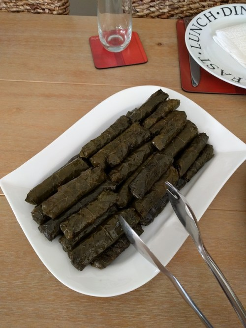 Hands down the best stuffed vine leaves I've ever had