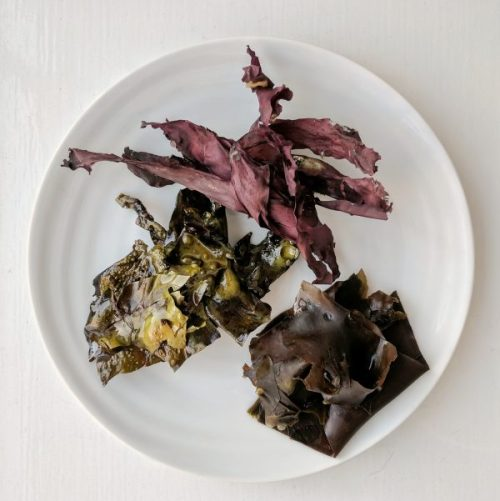 I Sea Bacon three ways: burgundy snackable seaweed, tender boiled and crunchy fried.