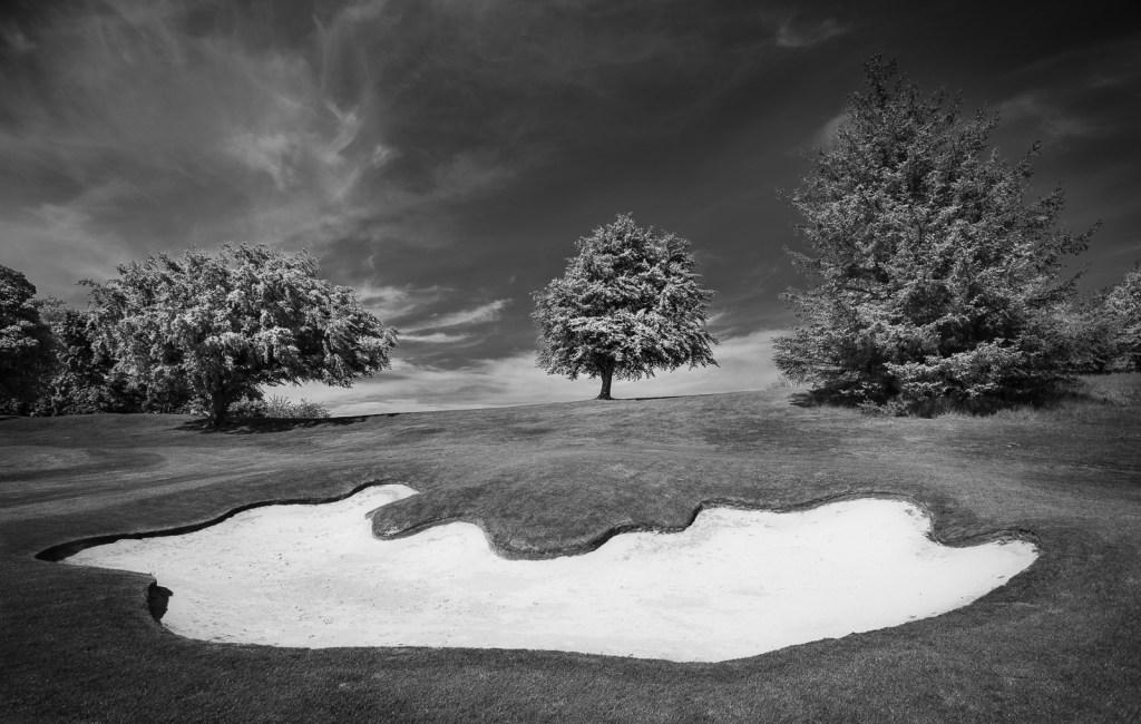 Doug Berndt - Mortonhall GC Trees and Bunkers-2