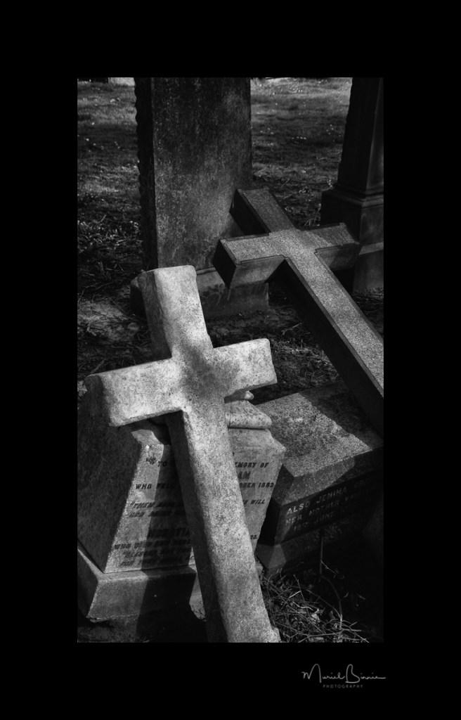 Muriel Binnie - Fallen Crosses