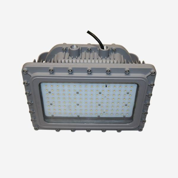 Hazardous Locations Luminaires D Series with metal incasing