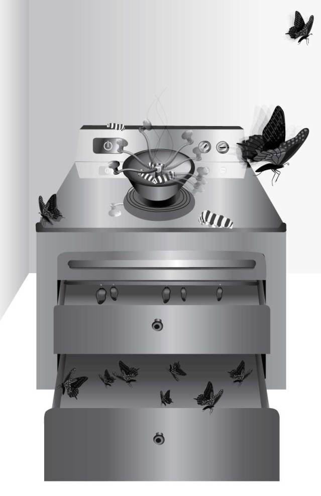 Pazoo Yang, Fantasy Appliance