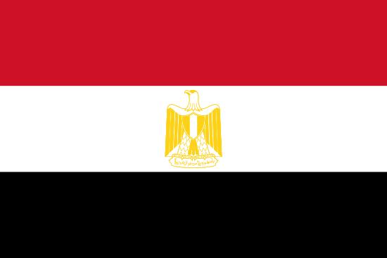 Egypt Market Research - flag of Egypt