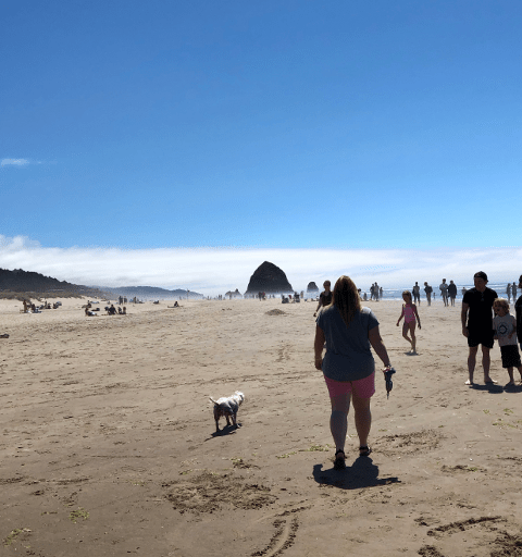 Family reunion Oregon Coast Seaside Cannon Beach
