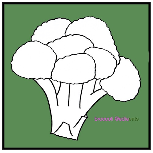 Chinese take-away style Broccoli and Beef - broccoli-Recipe and Illustration by EDIE EATS food blog by Edith Dourleijn-small