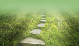 spiritual wayfarer 1 - BOLILE SI CAUZELE LOR SUBTILE