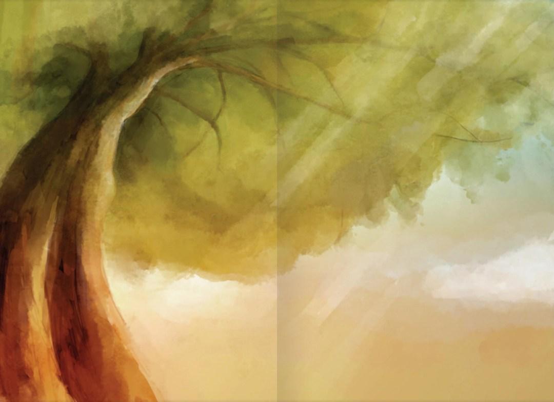 Anatole et le chêne centenaire - page 2
