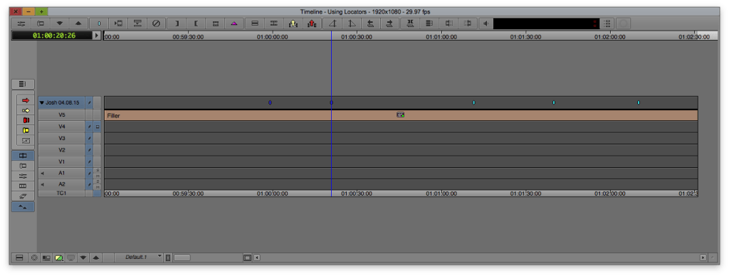 This is an empty timeline with markers on the top track that I renamed to my name and the date.